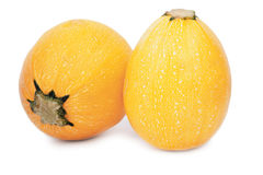 Två hela gula zucchinies Färgrika och healthful mogna zucchinies på en vit bakgrund En tropisk orange zucchini fotografering för bildbyråer
