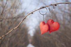 Två hjärtahängen på metallkedja Royaltyfri Bild