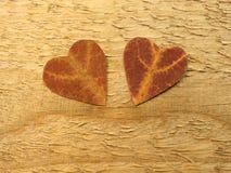 Två hjärtor som klipps från lönnlövet royaltyfri bild