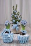 Två hyacinter och julgran klätt varmt för vinter Royaltyfri Bild
