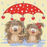 Två igelkottar med paraplyet royaltyfri illustrationer