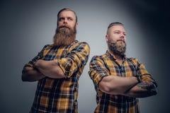 Två iklädda brutala skäggiga män en plädskjorta arkivbild