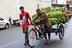 Två indiska män hjälper till transportsträckan en bananlastbil på vägen i den Pondicherry staden Royaltyfria Foton