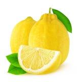 Två isolerade citroner Fotografering för Bildbyråer