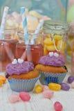Två jars med rosa lemonade Royaltyfri Fotografi