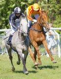 Två jockey sid - förbi - hästar för loppet för sidoridninggalopp arabiska Arkivbild