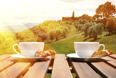 Två kaffekoppar och cantuccini Fotografering för Bildbyråer
