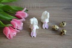 Två kaniner på tabellen Royaltyfri Foto