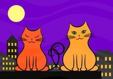 Två katter som är förälskade på taket i staden på natten Royaltyfri Bild