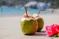Två kokosnötcoctailar på den vita sandstranden Semester och loppbegrepp arkivbilder