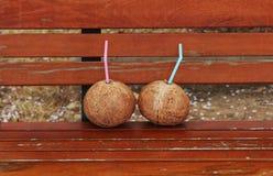 Två kokosnötter Fotografering för Bildbyråer