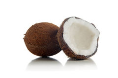 Kokosnötter på vitbakgrund Arkivbilder