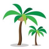 Två kokospalmer med kokosnöten Arkivbild