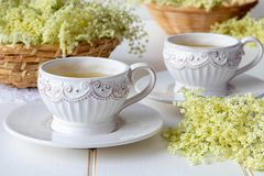 Två koppar av örtte med nya fläderblommor Royaltyfri Fotografi