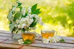 Två koppar av grönt te med jasminblommor Arkivfoton