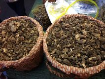 Två korgar av torkad Morel plocka svamp på ståndet i Barcelona, Spanien Royaltyfri Bild