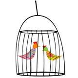 Två kulöra fåglar i en bur Royaltyfria Foton