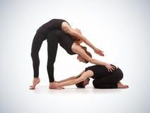 Två kvinnor och män som en öva yoga Royaltyfri Bild