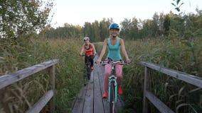 Två kvinnor rider cyklar på en träekologisk slinga bland vasserna stock video