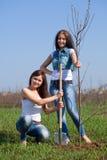 Två kvinnor som planterar treen Royaltyfria Bilder