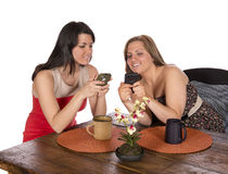 Två kvinnor som sitter kaffemobiltelefoner Arkivbilder
