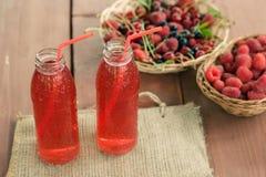 Två lät småkoka flaskor av förkylning bär frukt från blandade bär Arkivbilder
