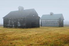 Två ladugårdar i dimma arkivbild