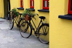 Två lantliga cyklar med blommakorgar som lutar på den röda och gula väggen Arkivfoton
