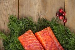 Gravlax med cranberryen och grönska royaltyfri fotografi