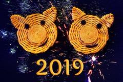 Två le framsidor av svin, symboler av 2019 på det kinesiska horoskopet, på en mörk bakgrund med efterföljd av fyrverkerier - royaltyfri foto