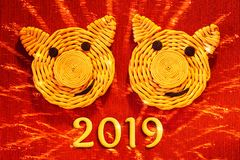 Två le framsidor av svin, symboler av 2019 på det kinesiska horoskopet, på en röd bakgrund med efterföljd av fyrverkerier - beröm royaltyfri foto