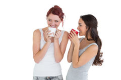 Två le unga kvinnliga vänner som dricker kaffe royaltyfria bilder