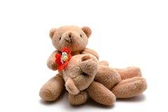 Två leksakbjörnar Arkivfoto