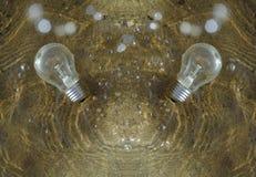 Två lightbulbs som kommer upp från vatten royaltyfria bilder