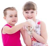 Två lilla flickvänner som slår kanin arkivfoton