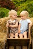 Två lilla gulliga blonda flickor sitter i en trävagn royaltyfria foton
