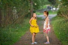 Två lilla gulliga flickvänner som talar animatedly fotografering för bildbyråer
