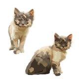 Två lilla katter Arkivfoto