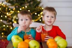 Två lilla le ungar, pojkar dricker fruktfruktsaft på julgranbakgrund Lyckliga vänliga barn Royaltyfri Fotografi
