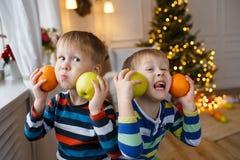 Två lilla le ungar, pojkar håller apelsinen på julgranbakgrund Lyckliga vänliga barn Selektivt fokusera Royaltyfri Bild