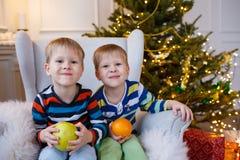 Två lilla le ungar, pojkar håller frukter - äpplet och apelsinen på julgranbakgrund Lyckliga vänliga barn Royaltyfri Fotografi