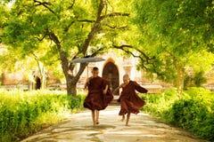 Två lilla munkar Arkivfoton