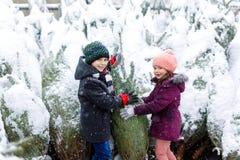 Två lilla syskon lurar det hållande julträdet för pojken och för flickan Lyckliga barn i vinter beklär väljande och köpande xmas arkivfoto