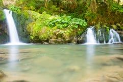 Två lilla vattenfall i skogen Royaltyfri Fotografi