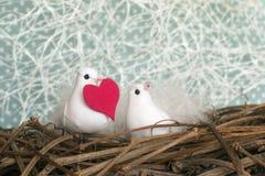 Två lilla vita fåglar som är förälskade i redet med röd hjärta Valent Royaltyfria Foton