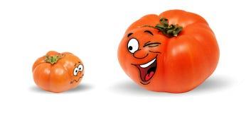 Två livliga tomater som talar till varandra Royaltyfri Bild