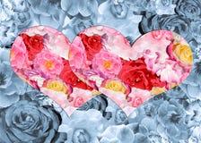 Två ljusa hjärtor med en modell av rosor på en grå blom- backg Arkivbild
