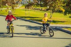 Två lyckliga pojkar som cyklar i, parkerar royaltyfria bilder