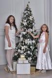 Två lyckliga systrar på jul Arkivfoto