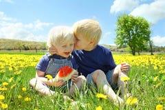 Två lyckliga unga barn som äter Watermellon i blommaäng Royaltyfria Bilder